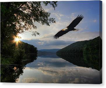 Eagle Canvas Print - A New Beginning by Lori Deiter