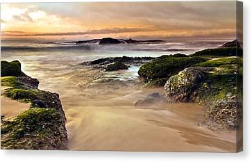 A New Day Canvas Print by Andrew Raby
