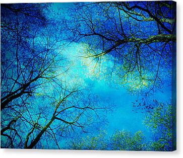A New Day Canvas Print by Angela Bruno