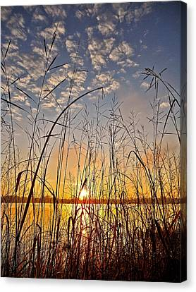 A New Day Begins ... Canvas Print