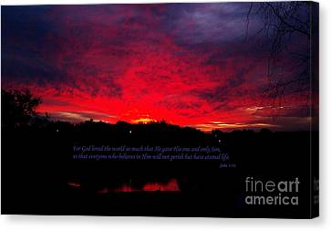 A New Day Canvas Print by Robert ONeil