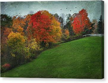 A New England Autumn Canvas Print by Barbara Manis