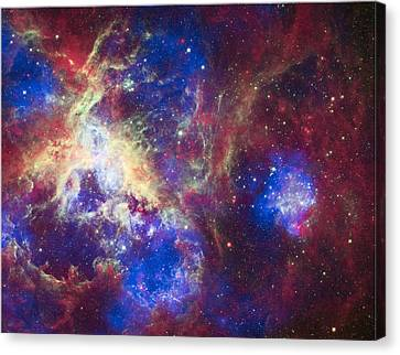 A New View Of The Tarantula Nebula Canvas Print by Space Art Pictures