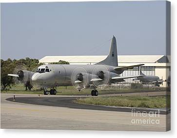 A P-3c Orion Of The Portuguese Air Canvas Print by Timm Ziegenthaler