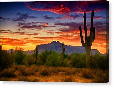 A Painted Desert  Canvas Print