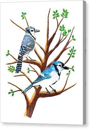 Bluejay Canvas Print - A Pair Of Bluejays by Stephanie Davis