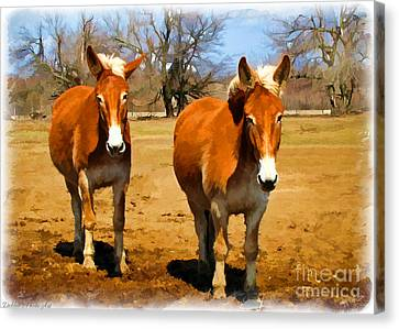 A Pair Of Mules  Digital Paint Canvas Print by Debbie Portwood