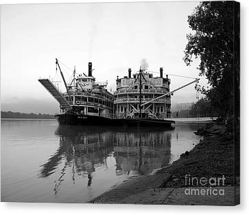 A Pair Of Queens Bw Canvas Print by Mel Steinhauer