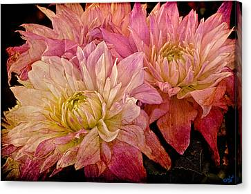 A Pastel Bouquet Canvas Print by Chris Lord