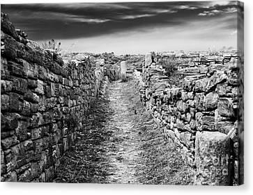 Ancient Greek Ruins Canvas Print - A Path To Delos Island by John Rizzuto