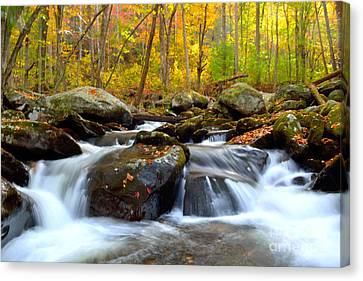 A Peaceful Colorful Waterfall And Forest Setting Canvas Print