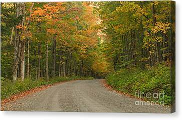 A Peaceful Road Canvas Print by Charles Kozierok