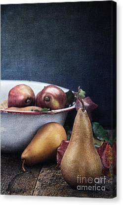 A Pear Sill Life Canvas Print by Stephanie Frey