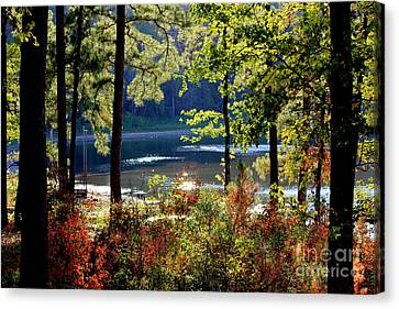 A Peek At Lake O The Pines Canvas Print by Kathy  White