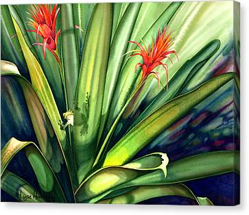 Bromeliad Canvas Print - A Peek Through The Leaves by Lyse Anthony