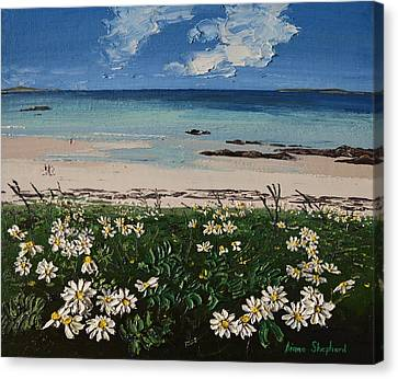 A Perfect Day At Coral Strand Connemara Ireland Canvas Print