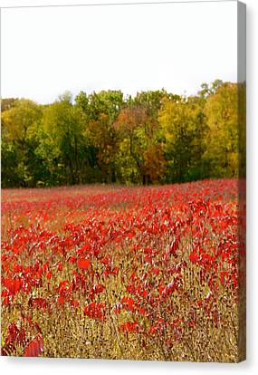 Beautiful Autumn Day Canvas Print - A Perfect Day by Art Spectrum