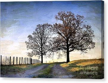 A Perfect Morning In April Canvas Print by Sari Sauls