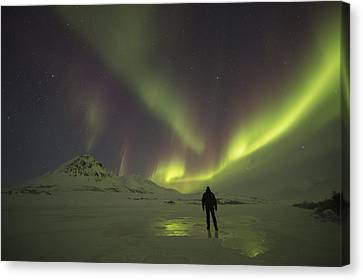 A Person Stands On The Frozen Canvas Print