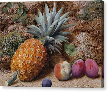 A Pineapple A Peach And Plums On A Mossy Bank Canvas Print by John Sherrin