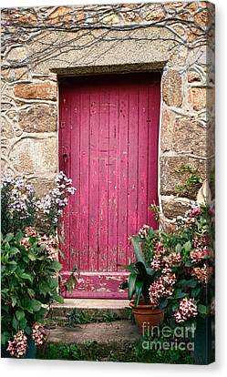 A Pink Door Canvas Print by Olivier Le Queinec