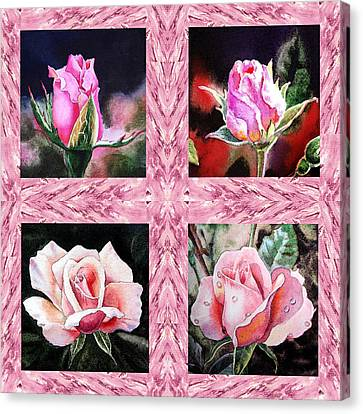 A Pink Quartet Of Single Roses Canvas Print