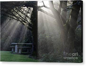 A Place For You Oregon Canvas Print by Bob Christopher