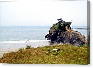 A Place Of Solitude Canvas Print by AJ  Schibig