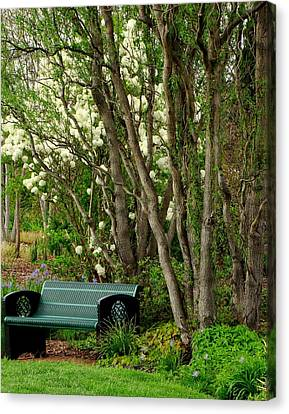 Canvas Print featuring the photograph A Place To Sit by Rodney Lee Williams