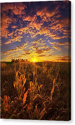 A Place You Call Home Canvas Print by Phil Koch