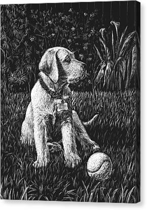 A Puppy With The Ball Canvas Print by Irina Sztukowski