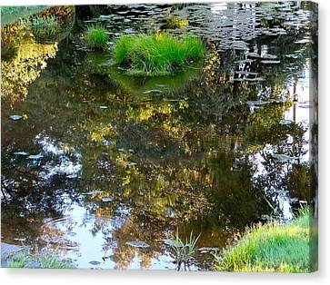 A Quiet Little Pond Canvas Print by Ira Shander