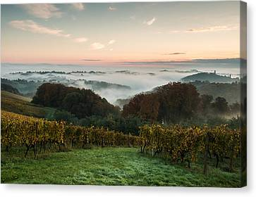 A Quiet Morning On The Hill Canvas Print by Davorin Mance