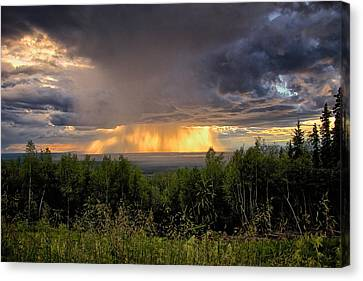 Canvas Print featuring the photograph A Rainy Night In Minto  by Michael Rogers
