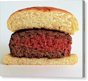 Hamburger Canvas Print - A Rare Hamburger by Romulo Yanes