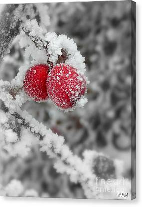 A Red Pair  Canvas Print