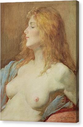 A Redhead Canvas Print