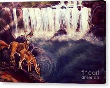 Detail Of A Tall Drink Of Water For A Pair Of White Tailed Deer In The Great Smoky Mountains Canvas Print by Kimberlee Baxter
