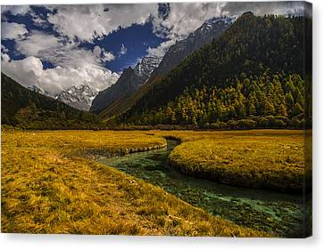 River Runs Through It Canvas Print by Aaron Bedell