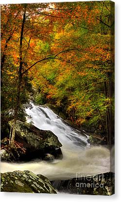 A River Runs Through It Canvas Print by Michael Eingle
