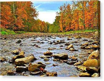 A River Runs Through It Canvas Print by Frozen in Time Fine Art Photography