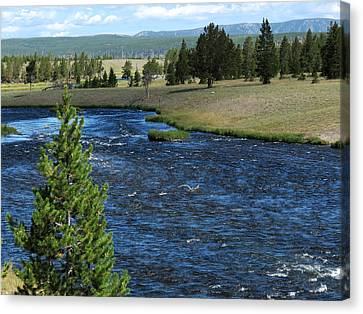 Canvas Print featuring the photograph A River Runs Through Yellowstone by Laurel Powell