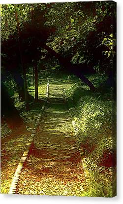 A Road Less Travelled Canvas Print by Tim Ernst