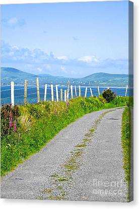 A Road To Waterville Canvas Print by Suzanne Oesterling