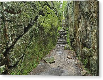A Rock Face Trail Leading To Agawa Bay Canvas Print by Ken Gillespie