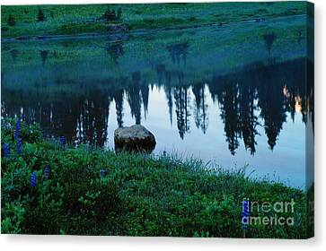 A Rock In The Reflection Canvas Print by Jeff Swan
