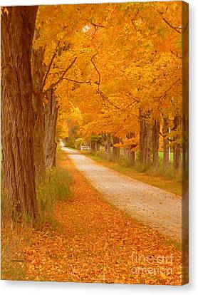 A Romantic Country Walk In The Fall Canvas Print by Lingfai Leung