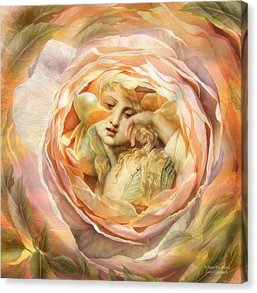 A Rose For Mary Canvas Print