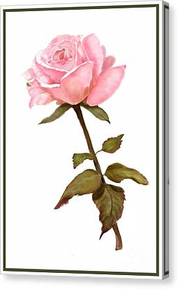 A Rose For My Love Canvas Print by Joan A Hamilton