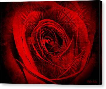 A Rose Canvas Print by Kylie Sabra